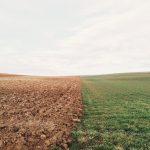 Technologia w rolnictwie